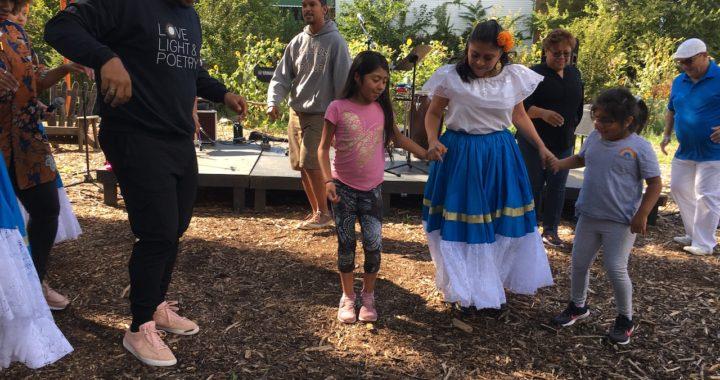 Brook Park hosts Stage, Garden, Rumba