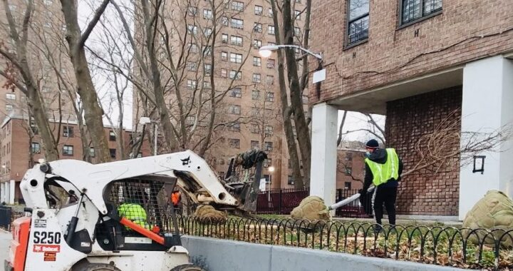 Greening the South Bronx for Earth Week
